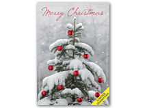 Snow Wonder Christmas Cards